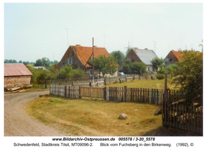 Schwedenfeld, Blick vom Fuchsberg in den Birkenweg