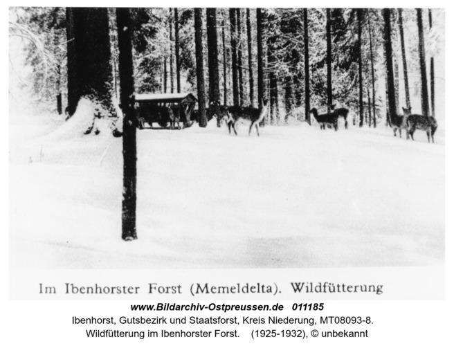 Ibenhorst, Wildfütterung im Ibenhorster Forst