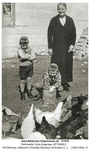 Wehrwalde, Hof Dikomey, Altbäuerin Charlotte Dikomey mit Enkeln Lothar und Karl