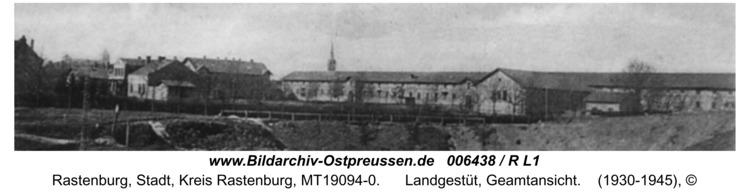Rastenburg, Landgestüt, Geamtansicht