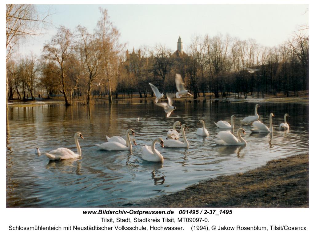 Tilsit, Schlossmühlenteich mit Neustädtischer Volksschule, Hochwasser