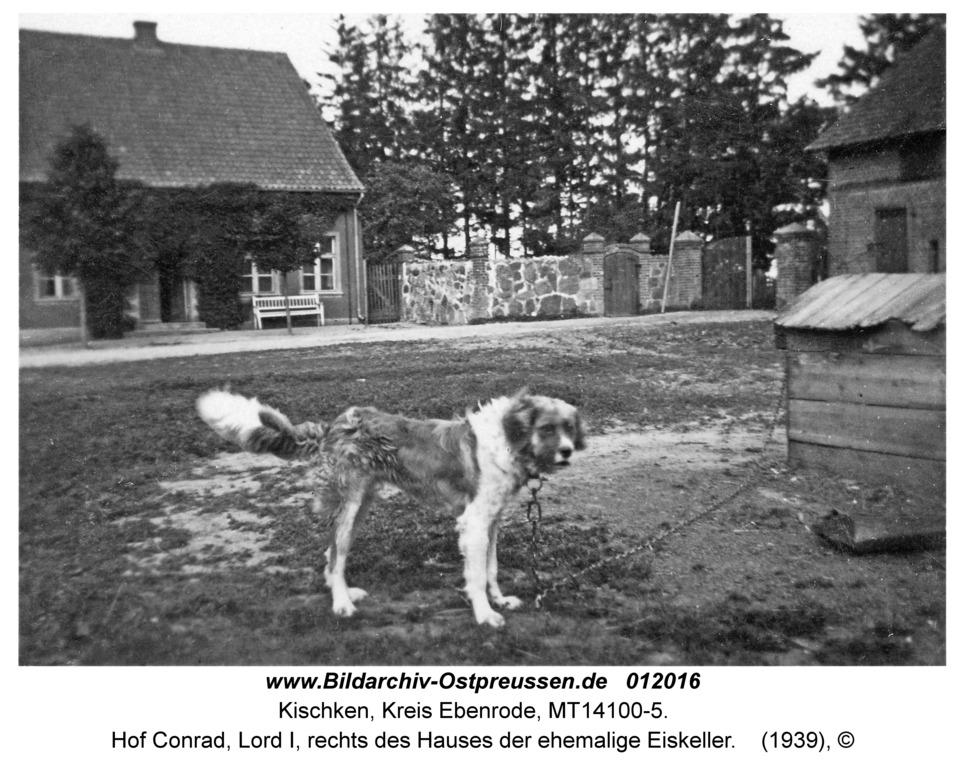 Kischken Kr. Ebenrode, Hof Conrad, Lord I, rechts des Hauses der ehemalige Eiskeller