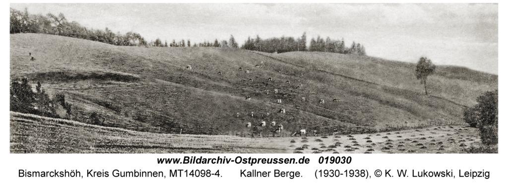 Kallnen Kr. Gumbinnen, Kallner Berge