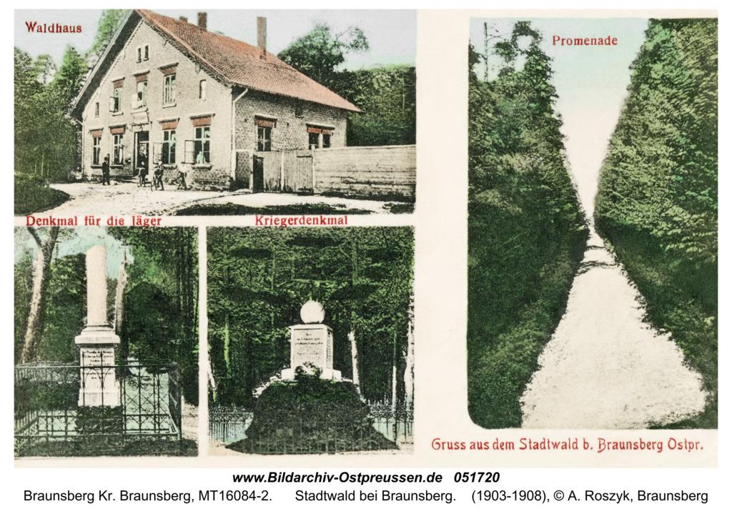 Braunsberg, Stadtwald bei Braunsberg