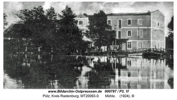 Pülz, Mühle