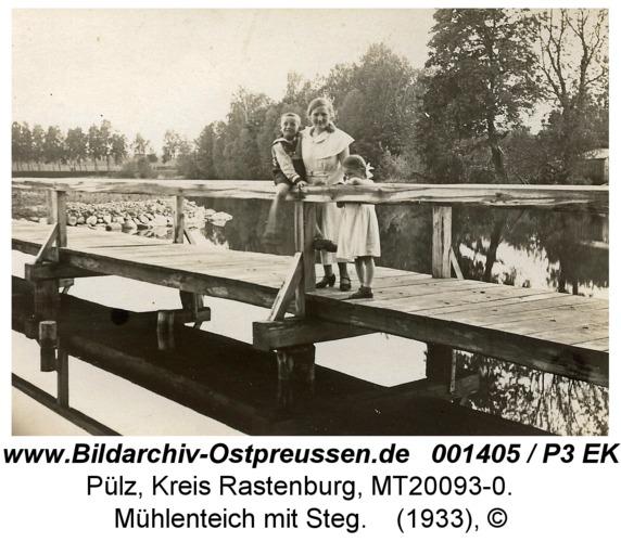 Pülz, Mühlenteich mit Steg