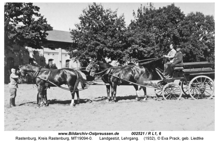 Rastenburg, Landgestüt, Lehrgang