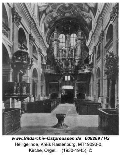 Heiligelinde, Wallfahrtskirche - Innenraum des Hauptschiffs: Blick zur Orgel