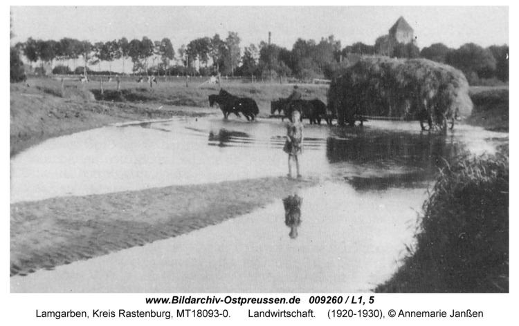 Lamgarben, Landwirtschaft