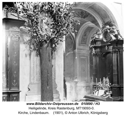 Heiligelinde, Kirche, Lindenbaum