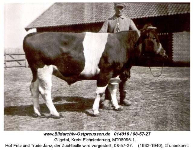 Gilgetal 27, Hof Fritz und Trude Janz, der Zuchtbulle wird vorgestellt, 08-57-27