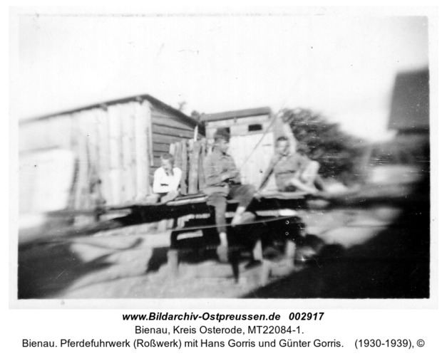 Bienau. Pferdefuhrwerk (Roßwerk) mit Hans Gorris und Günter Gorris