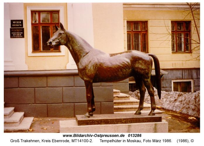 Groß Trakehnen, Tempelhüter in Moskau, Foto März 1986