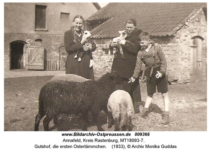 Annafeld, Gutshof, die ersten Osterlämmchen