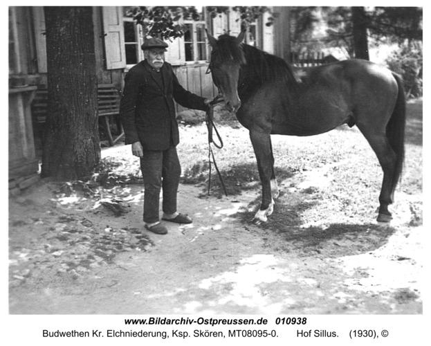 Budwethen Kr. Elchniederung, Ksp. Skören,  Hof Sillus