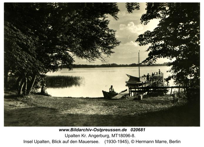 Upalten Kr. Angerburg, Insel Upalten, Blick auf den Mauersee