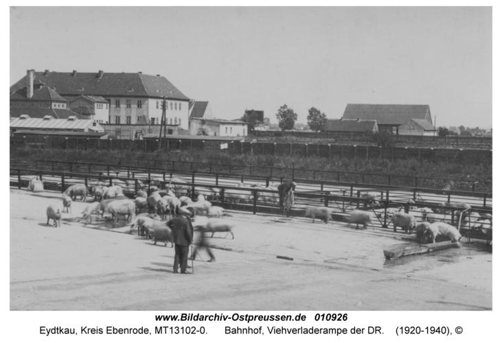 Eydtkau, Bahnhof, Viehverladerampe der DR