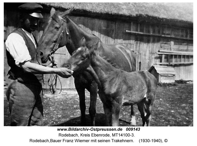 Rodebach, Bauer Franz Wiemer mit seinen Trakehnern