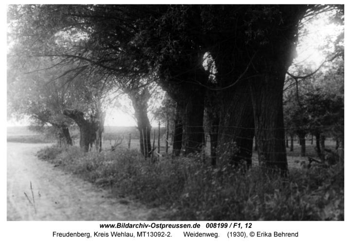 Freudenberg, Weidenweg