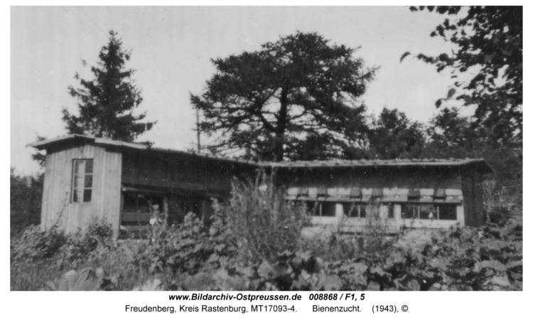 Freudenberg, Bienenzucht