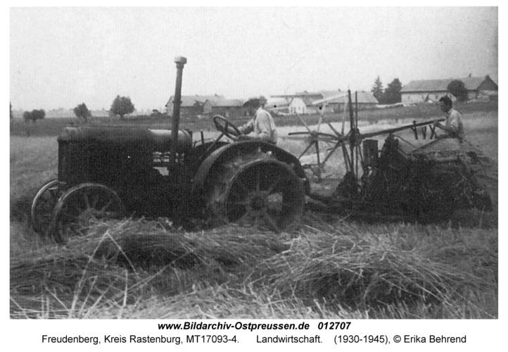 Freudenberg, Landwirtschaft