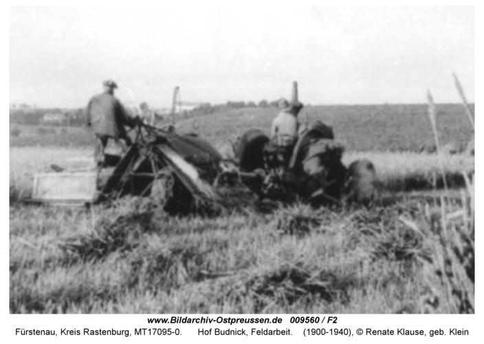 Fürstenau, Hof Budnick, Feldarbeit
