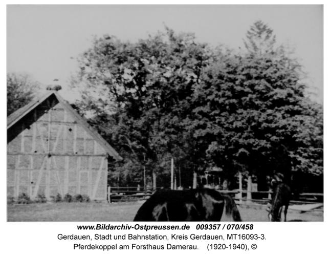 Gerdauen, Pferdekoppel am Forsthaus Damerau