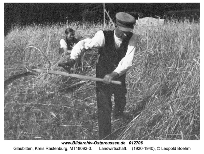 Glaubitten, Landwirtschaft