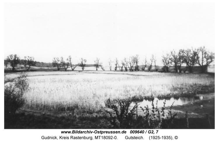 Gudnick, Gutsteich