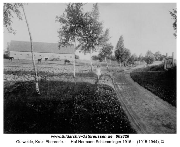 Gutweide, Hof Hermann Schlemminger 1915