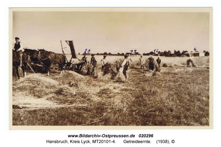 Hansbruch, Getreideernte