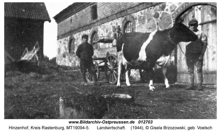 Hinzenhof, Landwirtschaft