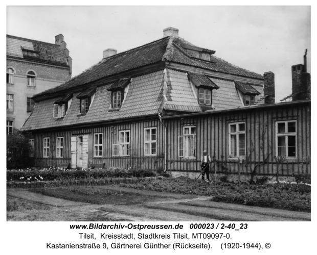 Tilsit, Kastanienstraße 9, Gärtnerei Günther (Rückseite)
