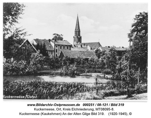 Kuckerneese (Kaukehmen), An der Alten Gilge Bild 319