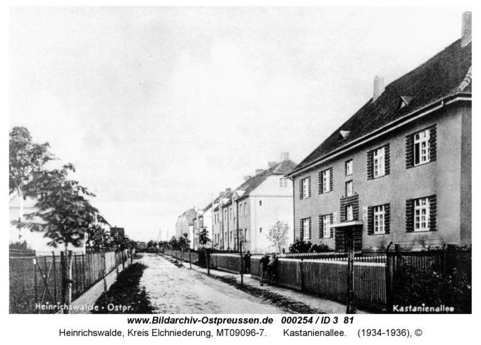 Heinrichswalde, Kastanienallee