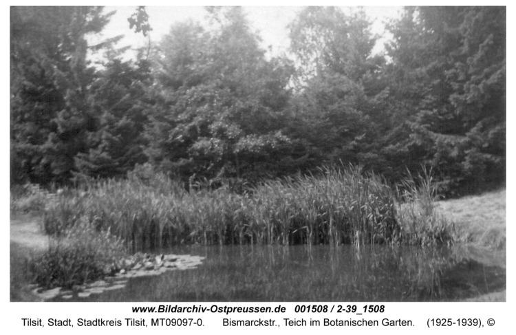 Tilsit, Bismarckstr., Teich im Botanischen Garten
