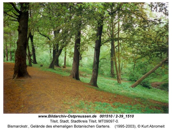 Tilsit, Bismarckstr., Gelände des ehemaligen Botanischen Gartens