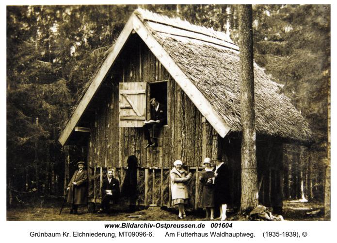 Grünbaum, Am Futterhaus Waldhauptweg