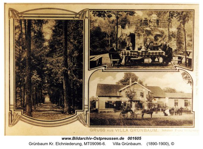 Grünbaum, Villa Grünbaum