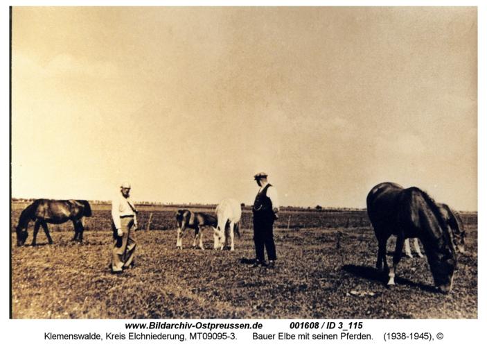 Klemenswalde, Bauer Elbe mit seinen Pferden