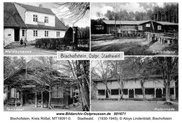 Bischofstein, Stadtwald