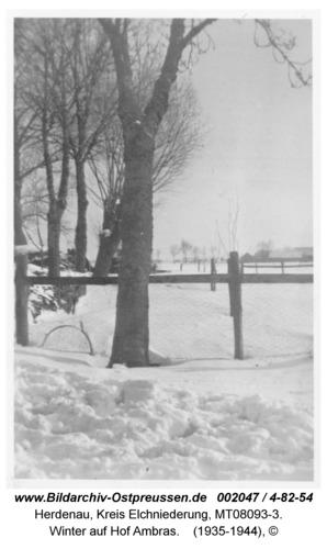 Herdenau, Winter auf Hof Ambras