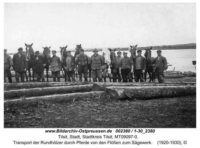 Tilsit, Transport der Rundhölzer durch Pferde von den Flößen zum Sägewerk