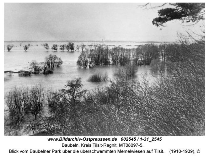 Baubeln Kr. Tilsit-Ragnit, Blick vom Baubelner Park über die überschwemmten Memelwiesen auf Tilsit