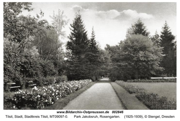 Tilsit, Park Jakobsruh, Rosengarten