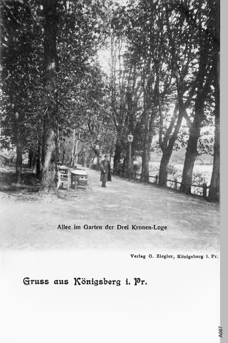 Königsberg, Allee im Garten der Drei Kronen Loge