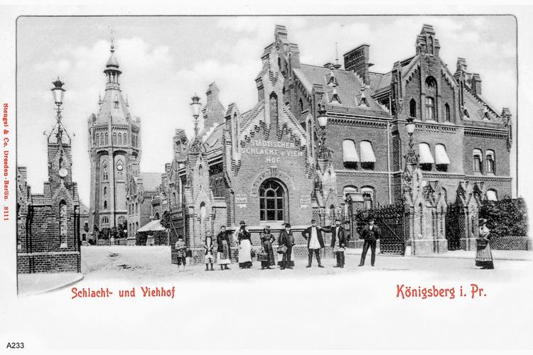 Königsberg, Schlacht und Viehhof