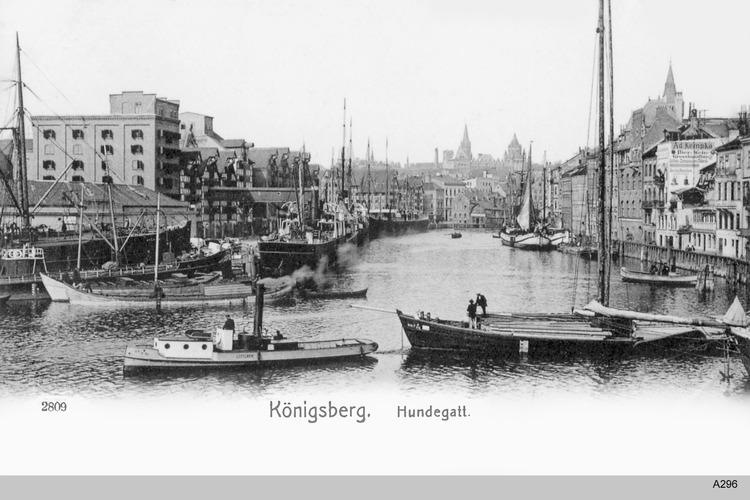 Königsberg, Hundegatt