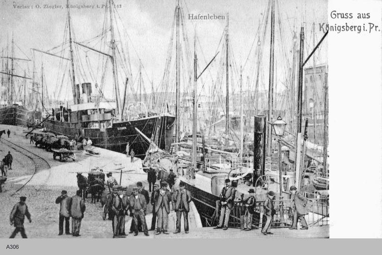 Königsberg, Hafenleben