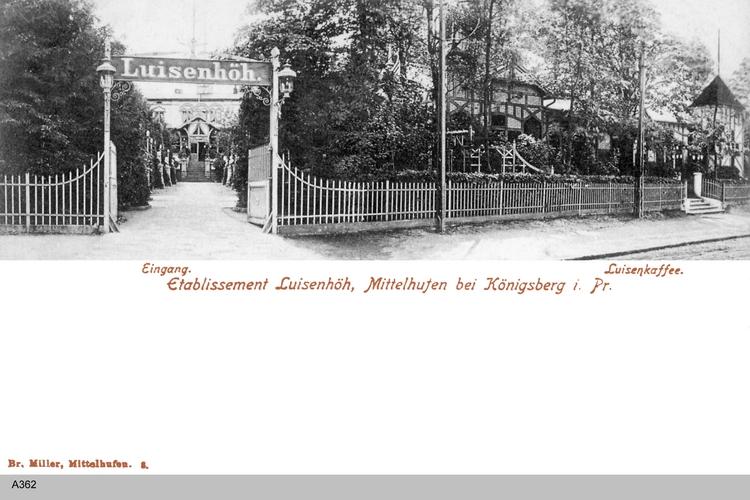 Königsberg, Luisenhöh